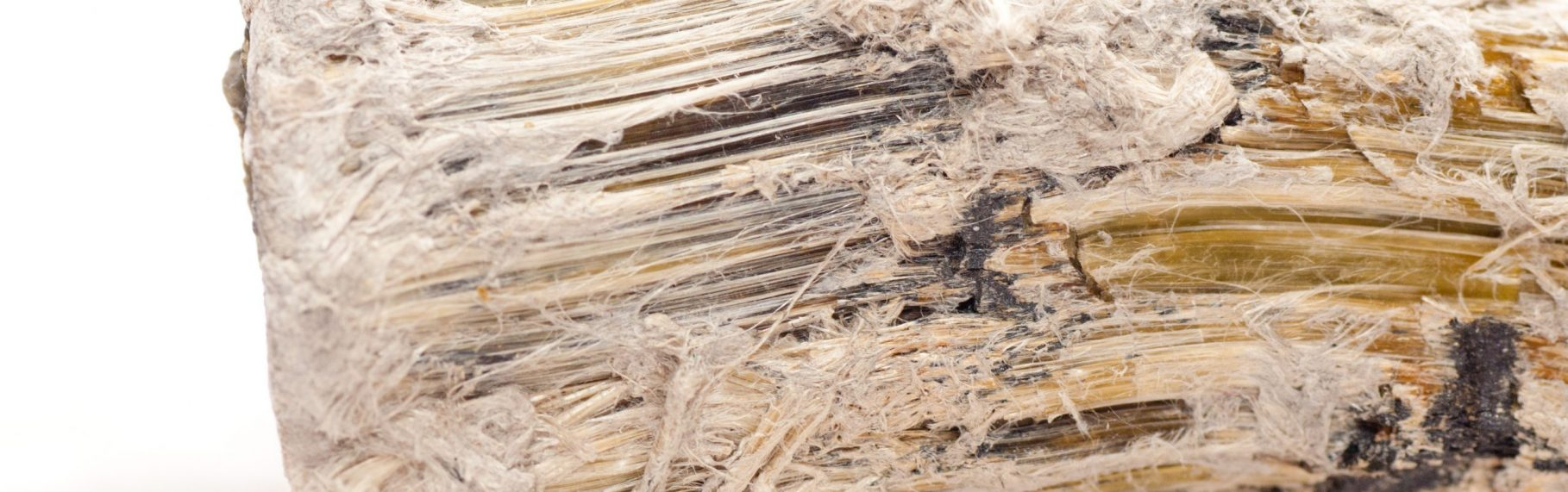 Asbestos Removal Risk Assessment Services
